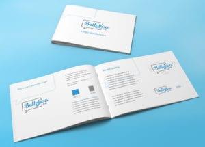 Logo guidelines document for Ballyhoo PR
