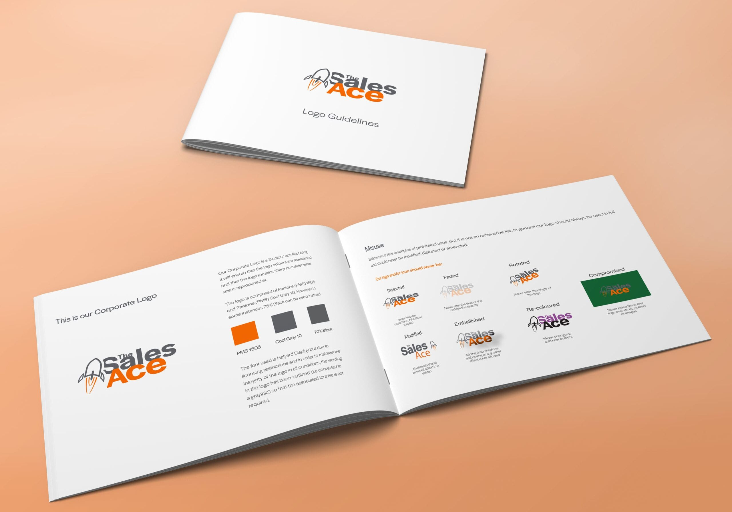 Logo Guide document as part of brand design project for The Sales Ace