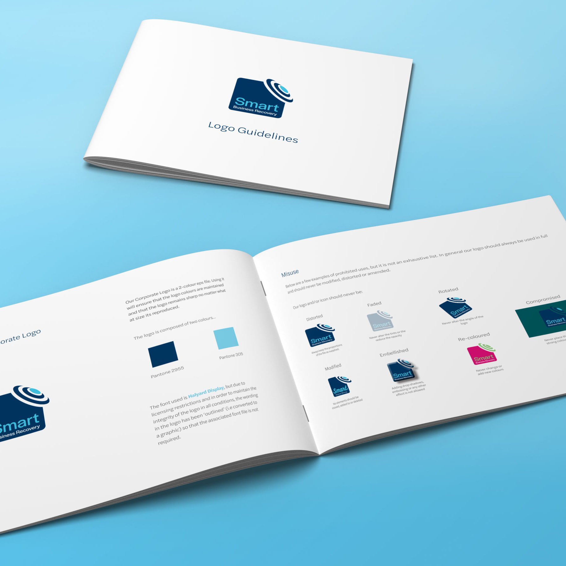 Logo Guidelines document for Smart Business Recovery